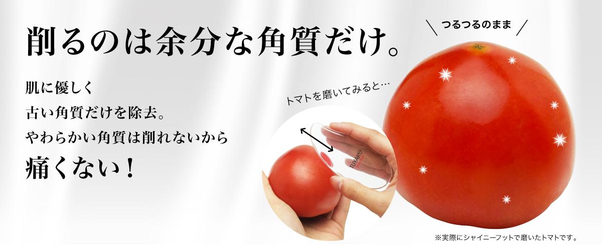 トマトで実験